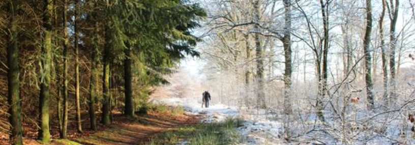 Should warmer weather be a cause for concern this winter?